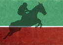 Royalty Free Photo of a Show Jumper Shadow