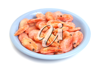 much shrimp in plate isolated on white background