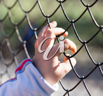 Child's hand on a grid of a metal fence .