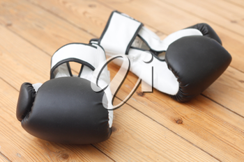 Royalty Free Photo of Boxing Gloves