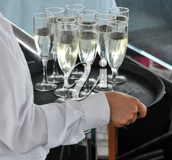 Royalty Free Photo of a Person Serving Champagne