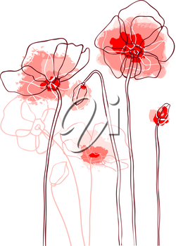 Red poppies on white background. Vector illustration