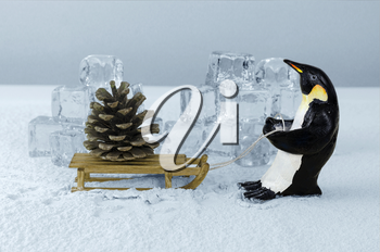 Royalty Free Photo of a Penguin Pulling a Pine Cone on a Sled