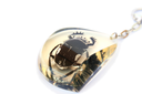 Royalty Free Photo of a Beetle in a Pendant
