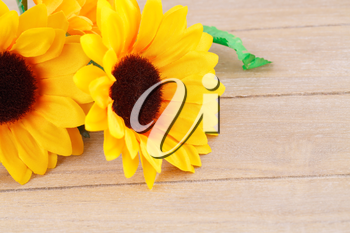 Yellow fabric daisies on wooden background.