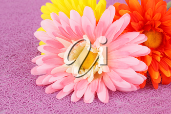Colorful fabric daisies on pink background, closeup picture.