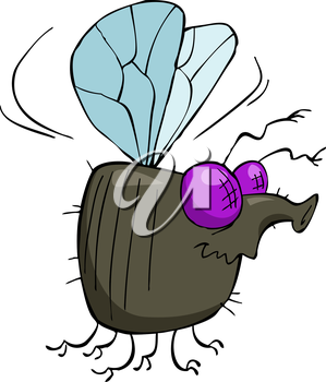 Royalty Free Clipart Image of a Fly