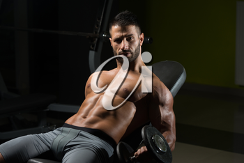 Handsome Man Working Out Biceps In A Dark Gym - Dumbbell Concentration Curls