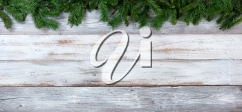 Top border of Christmas evergreen branches on white vintage wood