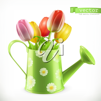 Watering can and a bouquet of tulips, spring flowers 3d vector icon