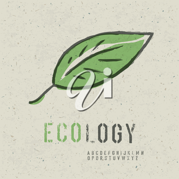 Ecology concept collection. Include green leaf image, seamless reuse paper texture in swatch palette and stencil alphabet. Vector, EPS10