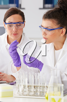 Two Female Technicians Working In Laboratory