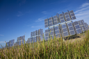 A field of photovoltaic solar panels providing renewable alternative green energy with bullrushes in the foreground