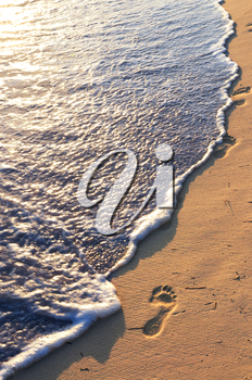 Tropical sandy beach with footprints and ocean wave