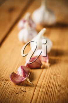 White raw garlic on wooden plank desk background. Organic garlic whole and cloves