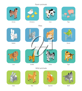 Wild exotic and farm animal set isometric. Pet dog bird, animals vector, cartoon animals, cat and lion, horse and tropical wildlife, mammal creature illustration. Isometric animal set