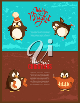 Merry Christmas penguin wearing hats and sweaters with pine tree print vector. Animal drinking tea, cup with hot beverage, knitted socks accessories