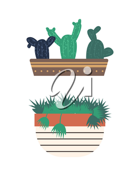 Greenhouse set of isolated plants vector, flowerpot with flora, flat style. Conservatory with greenery for home, flower with foliage, cactus with thorns