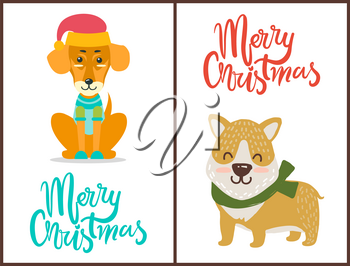 Merry Christmas banner congratulation from pets dressed in bright knitted clothes. Vector illustration with two happy dogs isolated on white background