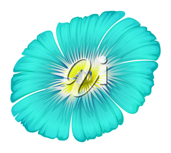 Illustration of a blooming blue flower on a white background