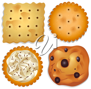 Illustration of the delectable cookies on a white background