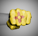 United states, fist with the flag of a state, New Mexico