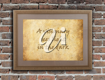 Old wooden frame with written text on an old wall - A visionary sees light in the dark