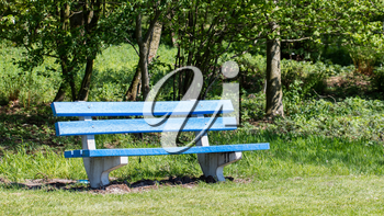 Blue bench in a public park, the Netherlands