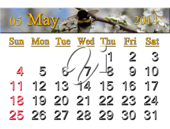 calendar for the May of 2014 year on the background of flying bumblebee