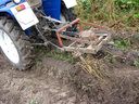 image of process of harvesting of a potato by tractor