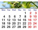 calendar for May of 2015 year with ribbon of blooming walnut