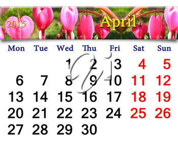 calendar for April of 2015 year with ribbon of blooming dicentra
