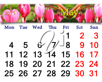 calendar for May of 2015 year with fragment of blooming dicentra