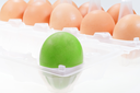 one separate green chicken egg against several brown eggs