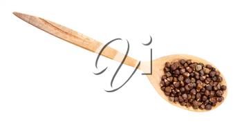top view of grains of paradise pepper in wood spoon isolated on white backgrouns