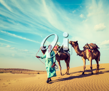 Vintage retro hipster style travel image of Rajasthan travel background - Indian cameleer (camel driver) with camels in dunes of Thar desert. Jaisalmer, Rajasthan, India