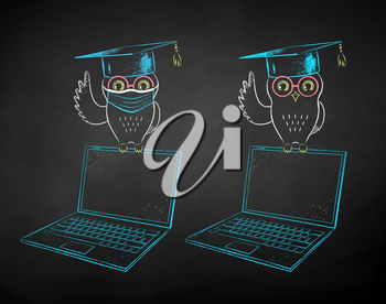 Vector chalk drawn illustrations of student owl sitting on laptop with and without face mask on black chalkboard background.