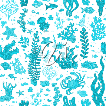 Vector illustration. Various shell, algae, fish, starfish, bottle with a letter, key on white background.