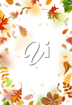 A lot of falling leaves on white background. Vertical backdrop. Oak, rowan, maple, chestnut and aspen leaves.