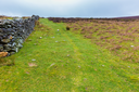 Manmade stone wall and trail in Wicklow Mountains
