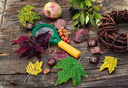 Magnifier and autumn foliage and plants on wooden table
