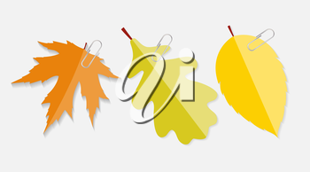 Shiny Autumn Natural Leaves Label with Clip Vector Illustration. EPS10
