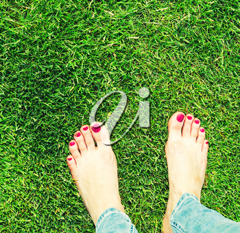 Female bare feet standing on the grass