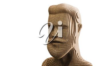 Human head model isolated on white background. Cardboard idea