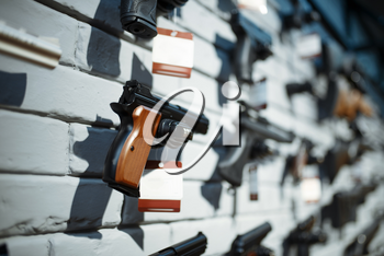 Handguns on showcase in gun shop closeup, nobody. Euqipment for security on stand in weapon store, selfdefence and sport shooting hobby