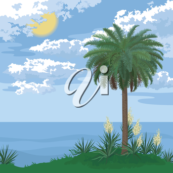 Tropical landscape, sea island with palm tree, bloomer plants Yucca and sky with clouds and sun. Vector