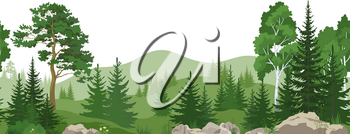 Seamless Horizontal Summer Mountain Landscape with Pine, Birch and Fir Trees, Green Grass on the Rocks. Vector