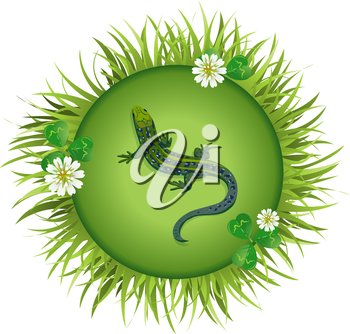Insects and summer nature icon.lizard on a meadow