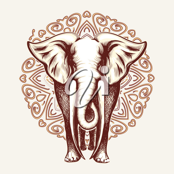 Elephant with huge tusks on Mandala pattern background. Vector illustration.