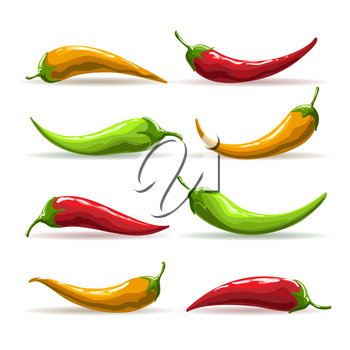 Red, yellow and green chili peppers. Hand drawn vector illustration.